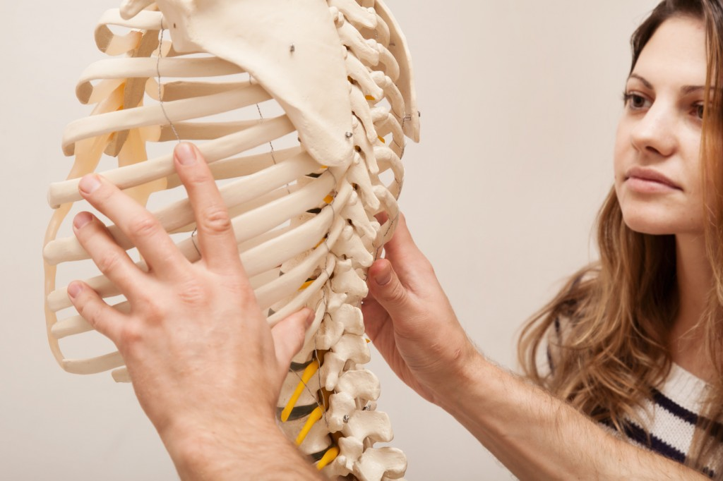 Chiropractor explains to Patient using plastic model